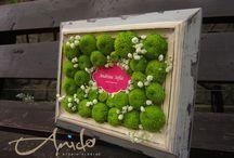 Flowers, frames & box