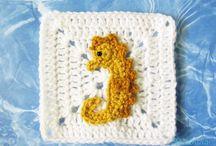 sea horse aq