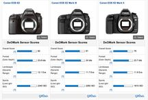 Canon 6D and lenses / The canon 6D and lenses within my reach.