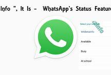 """""""Info / Tagline"""", It Is – WhatsApp's Status Feature"""