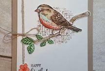 Carte oiseaux