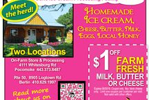 Dazzling Discounts & Deals / From your Friends at Frugals, the Local Source of Coupons; www.frugals.biz