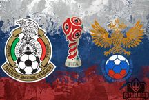 RUSSIA / Russia, ranked 65th in the world by FIFA, will hope to avoid the fate that struck South Africa in 2010, when the host nation failed to reach the knockout stage for the first time. With experienced attackers like Alan Dzagoev and Fyodor Smolov, the hosts can outperform that ranking in front of a spirited home backing.
