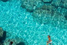 Reisen und Urlaub / Jeder ist ein Fan von Ferien und exotischen Destinationen, nicht wahr?