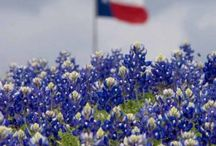 Texas Flag / Texas, Our Texas! All hail the mighty State! Texas, Our Texas! So wonderful so great! Boldest and grandest, withstanding ev'ry test O Empire wide and glorious, you stand supremely blest!  The Texas flag is awesome and can improve the decor of any space!  Please feel free to contact texasschoolpride@pollooza.com if you would like to add pins to this board!  Be courteous and do not more than 2 similar pins in a row!