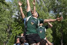 Wanderers vs Irish - May 31, 2014