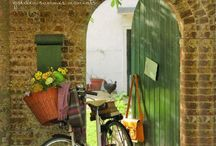 Bicycles / by Sherry Lindley
