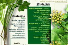 recetas medicina natural