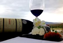 Cheese and Wine pairing at Benguela Cove / This savoury combination is so perfectly matched that scientists have even taken to explaining why cheese and wine are so perfectly paired.http://www.benguelacove.co.za/article/cheese-and-wine-pairing