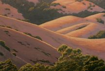 ROLLING HILLS PAINTINGS