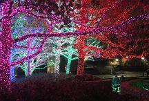 Oklahoma City Christmas Lights & Decorations / A look at the Holiday scenery around Oklahoma City.
