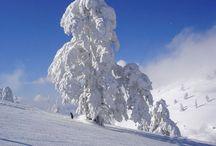 Skiing rocks
