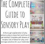 attività sensoriali