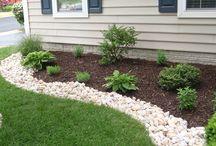 garden, yardscape