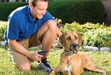 Remote Training Systems / Remote trainers let you teach your dog commands such as Stay and Come and stop bad behavior including digging in the garden or jumping on people. The long-range handheld remote transmitter delivers a safe, humane correction to your dog's receiver collar. Choose from spray, static, ultrasonic, and vibration.