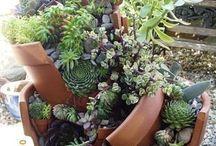 все для сада / дизайн, цветы все что можно придумать и сделать своими руками