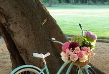 Bikes, Hues, and Flora Too!