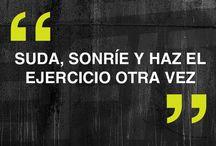 frases ...