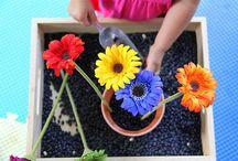Montessori / by Bethany Baker