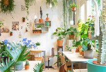 Horta e jardins
