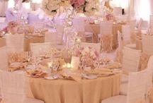 Resort & Beach weddings / Large weddings in resort ballrooms and their beachfronts in St Petersburg, Sarasota and Boca Grande