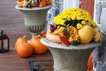 Autumnal Warmth