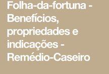 flor fortuna/mediação