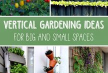 Garden ideas for small spaces / Garden ideas for small spaces