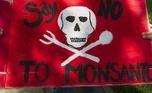 No to Monsanto!!