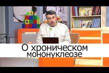 - Здоровье   Доктор Комаровский