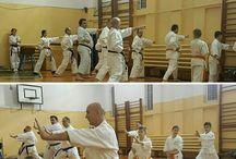 Karate Risei Iaşi - Filiala Vaslui