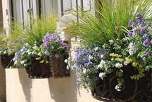 Blumenkasten gestalten