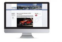 Flexipage für Transport- / Reise- / Mobilitätsunternehmen / BESCHREIBUNG