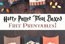 Harry Potter synttärit