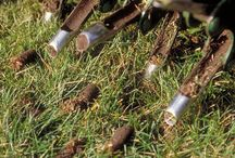 Lawn Aeration fairfield &  Vacaville / Reach to best lawn aeration services in Fairfield Area. Seaofgreenlawnservice is the best place for all your lawn aeration needs.