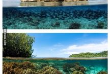 Places to which I will travel in my lifetime