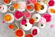 Wild Poppies LOVES..