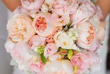 Ramos de xv rosas