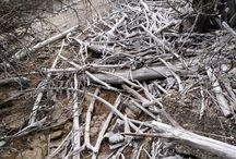 madera y mas cosas