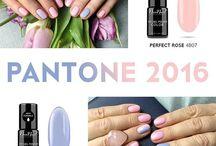 2016 PANTONE inspiration / Serenity and Rose Quartz
