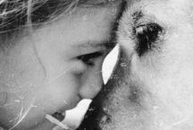 My darling is dog