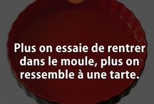 NeuroHack Fun / Funny wisdom quotes... Citations de sagesse humoristique !