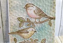 Karty ptáci