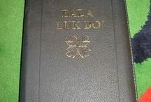 Lun Bawang /Bornean Bibles