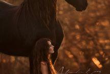 Equine Portrait Shoot Inspiration