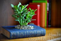 Upcycled Books