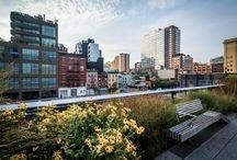 High Line Park - New York, USA / New York schwebt im siebten Himmel, seit der High Line Park eröffnet ist, ein Erholungsareal auf den Gleisen einer Güterbahn. Dort wachsen Wildblumen und Gräser, alles grünt und strebt zur Sonne.