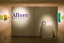 Allure, a Senior Exhibit by Shannon Bjerketvedt