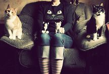 Cat Ladiness / by Melissa Lydon