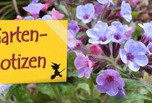 Garten | selbstgehext.de